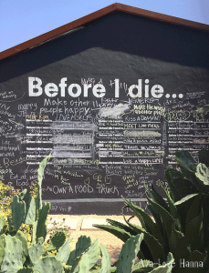 Art in Austin - Before I Die